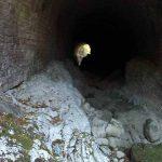 Gola del Fiume Serra un percorso da fare immersi nella Natura